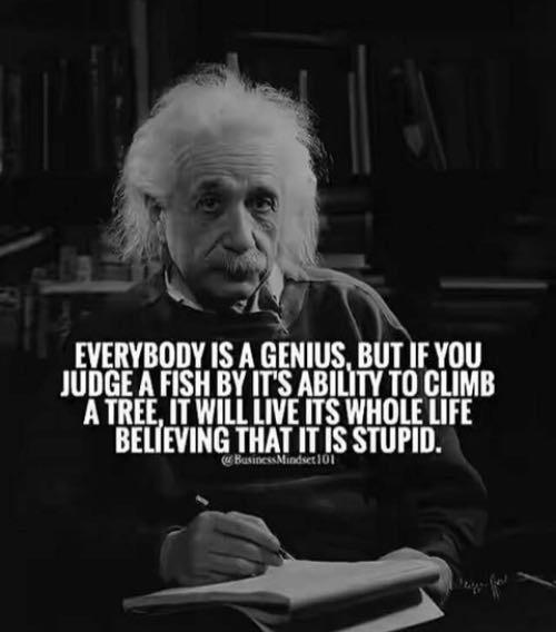albert einstein quote everybody is a genius eigen kracht mindset blog fernst
