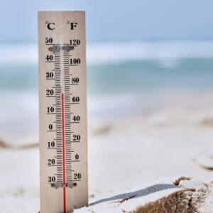 22 graden gelukstemperatuur nest thermostaat