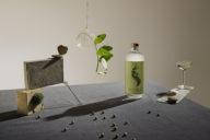 wereld eerste gedistilleerde non-alcoholische spirit seedlip